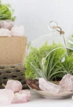 18-jardines-en-miniatura-para-decorar-tu-hogar-16-e1497072250620